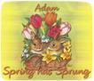 Adam-gailz-bunnies and tulips