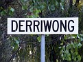 Derriwong