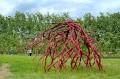 Grounds For Sculpture Art Park