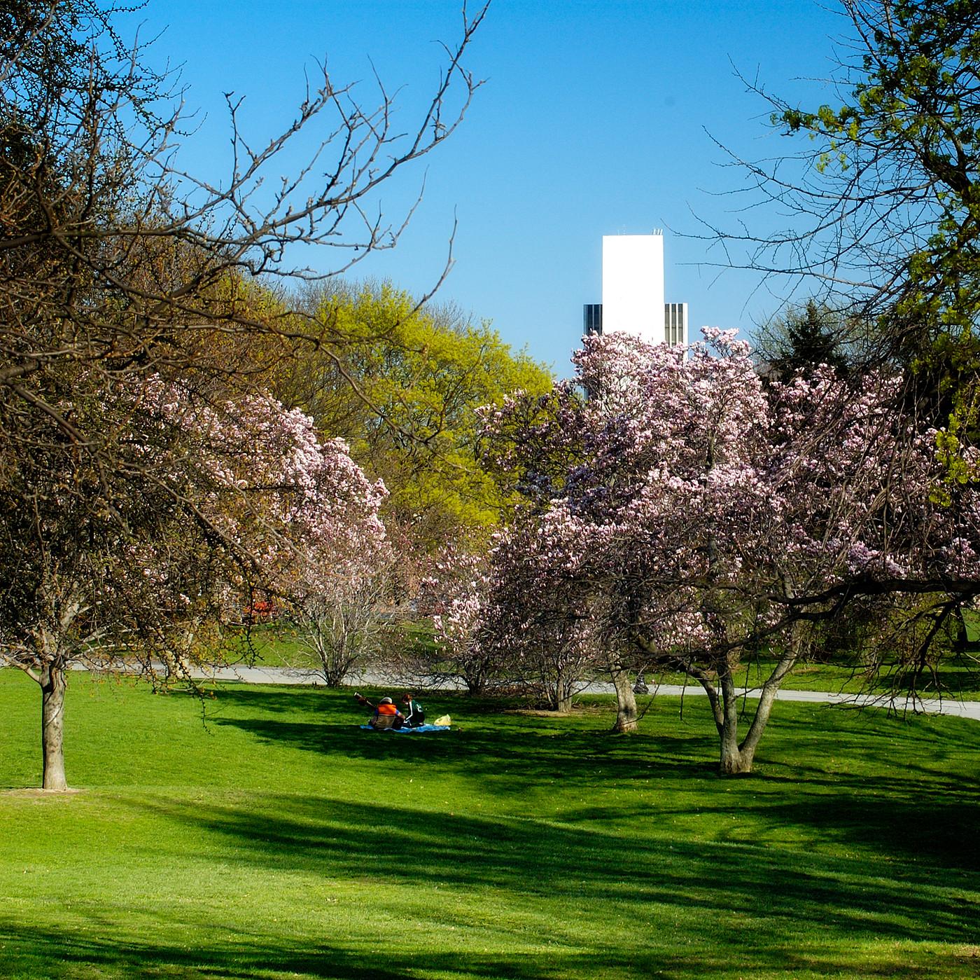 Washington Park, April