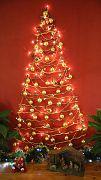 Christmas Tree 2016 December 11 (2)