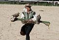 Royal falconer
