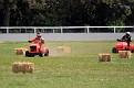 Lawn Mower mayhem 010