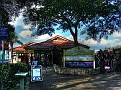 Mt Coot-tha lookout 002