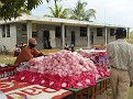 Les cayes distributions 12-22-2009 029