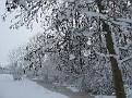 sneeuw2 005