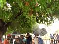 fondation rhau 12-22-2009 014