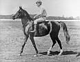 ABEYAH #39 (desert-bred) 1896 bay mare