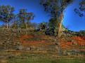 Cowra Rock Farm 001