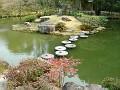 Pond in the rear garden