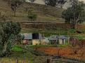 Wellington to Mumbil Farm 010