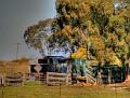 Euchareena Farm 001