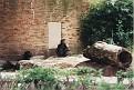 1995 Bronx Zoo 05