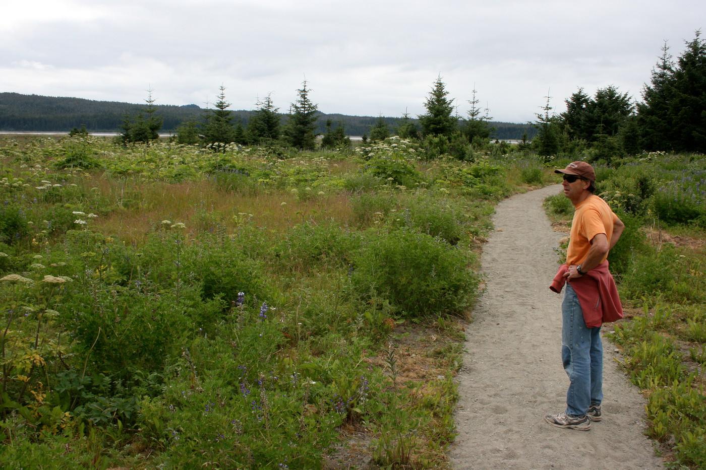 Nagoonberry trail