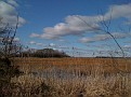 Dennis TWP Marsh, Looking West from Route 47 to the Delaware Bay.