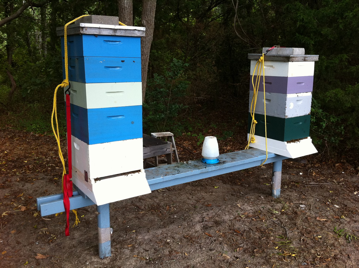 Thursday August 25, 2011.  The time to secure your bee hives down is BEFORE the Storm!!!  Straps, Rope, whatever you got to prevent a tip over...    Gary
