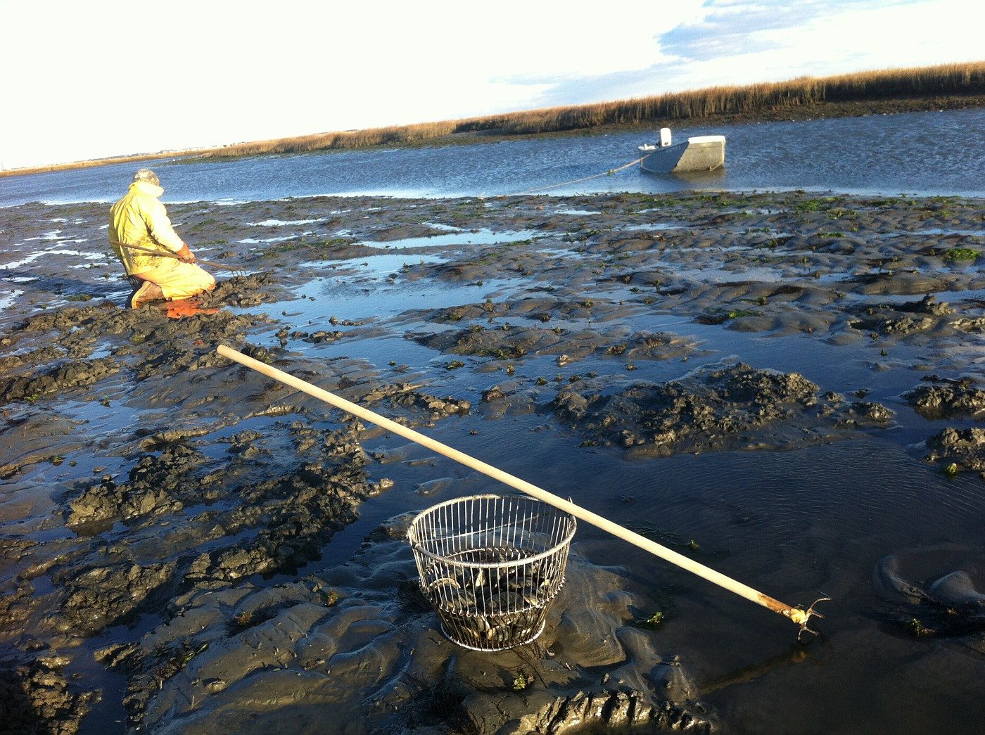 December 28, 2011.   Clamming near Avalon Manor, NJ.  Pasta & Clam Feast Tonight.