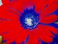 Flower Service 066b