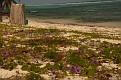 Grand_Cayman-138.jpg