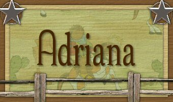 Adriana - Cowboy3.jpg