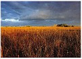 Everglades NP 02