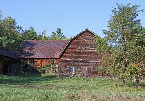 Barn with Vines #3