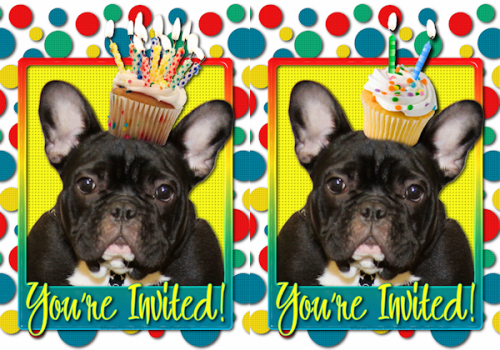 Say Woof Petography Custom Request for 2 Year Old Birthday – 10 Year Old Birthday Invitations