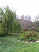 Descano Gardens22