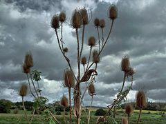 Herbstwolken haben den Sommer vertrieben