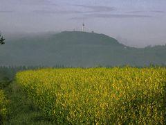 Monte Wau-wau im Morgennebel