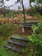 Ruhebank im Fichtenwald :-|