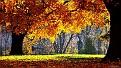 autumn-wallpaper-1920x1080-002