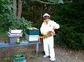 Aug 5-09 / Inspecting My Honey Bee Hives!!!