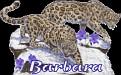 Barbara Big Cats2