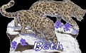 Beth Big Cats2