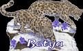 Betya Big Cats2