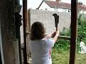 Bubble threatens the garden