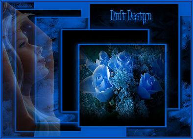 Didi Design