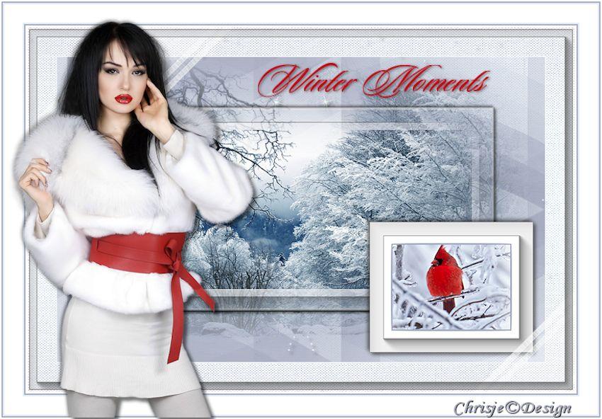 Les 43 Winter Moments