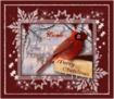 Nicole-xx MERRY CHRISTMAS-CARDINAL-4EVRiggles-2012-NICOLE[1]