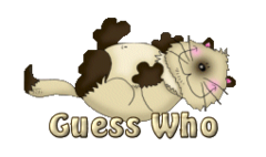 Guess Who - KittySitUps