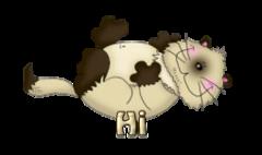 Hi - KittySitUps