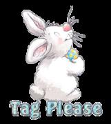 Tag Please - HippityHoppityBunny