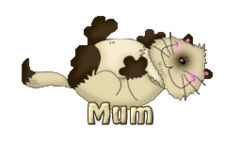 Mum - KittySitUps