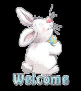 Welcome - HippityHoppityBunny