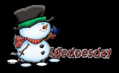 DOTW Wednesday - Snowman&Bird