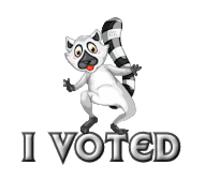 I Voted - RaccoonStepOnName