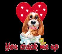 You crack me up - ValentinePup2016
