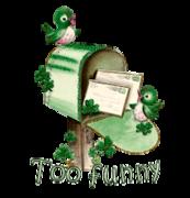 Too funny - StPatrickMailbox16