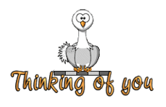 Thinking of you - OstrichWithBlinkie